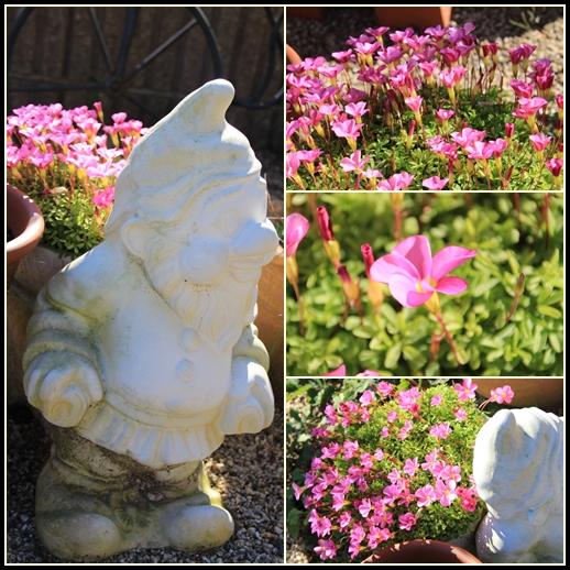 花かご背負った小人