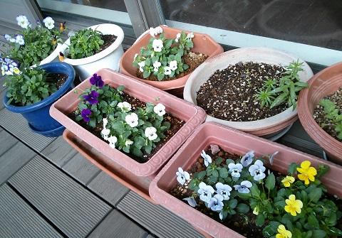 gardening585.jpg