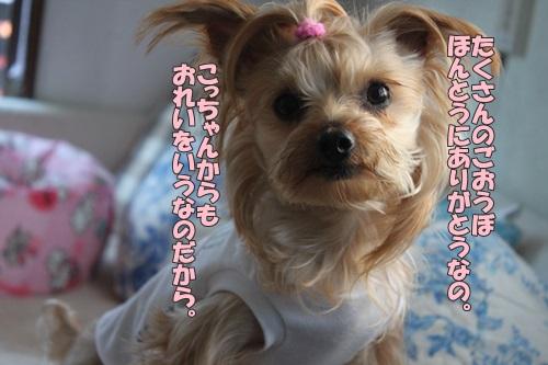 IMG_65220.jpg