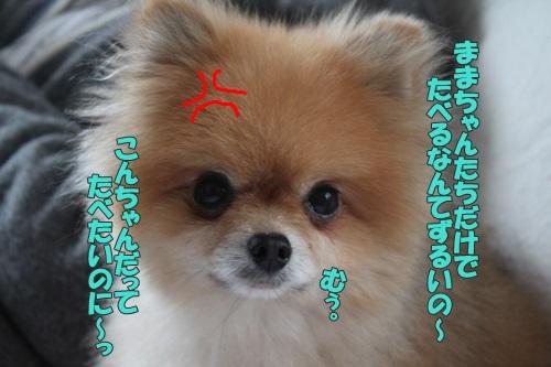 IMG_66020.jpg