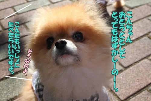IMG_66450.jpg