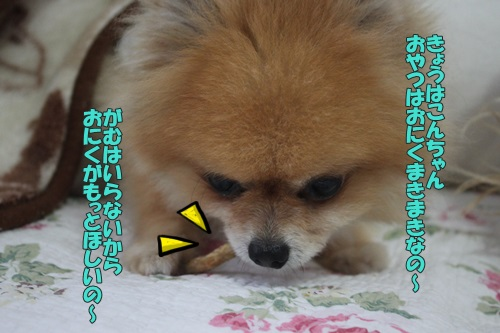 IMG_67630.jpg