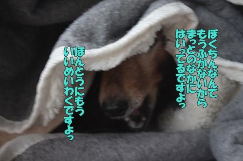 IMG_68530.jpg