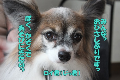 IMG_68930.jpg