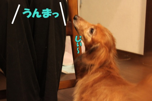 IMG_69910.jpg