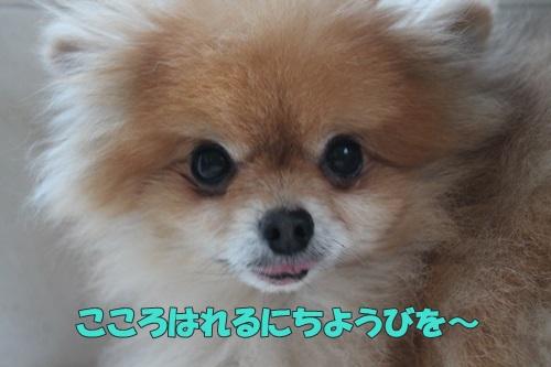 IMG_70560.jpg