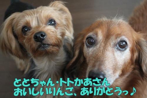 IMG_72460.jpg