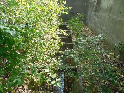 奈良川の名前のない橋@横浜市青葉区d ことり橋方面
