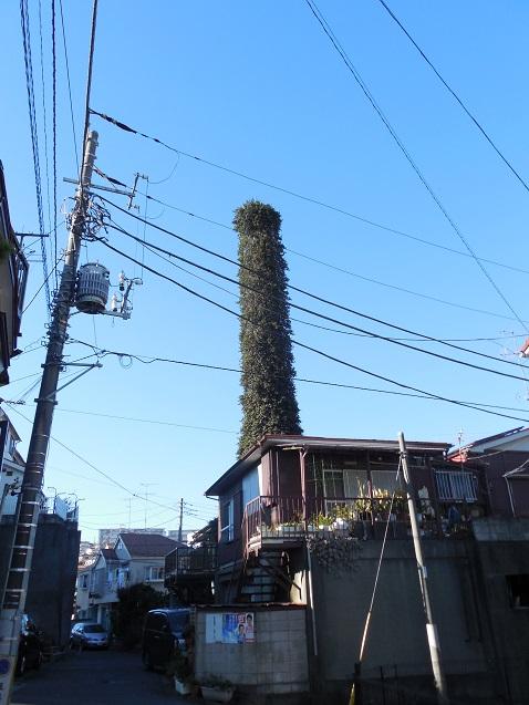 緑の塔a 610