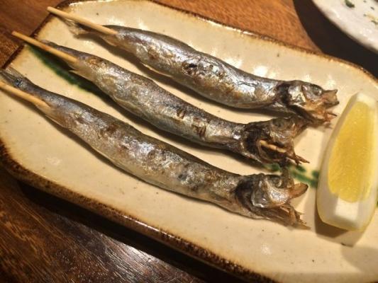 Mallotus villosus_fish67