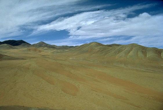 Atacama1.jpg