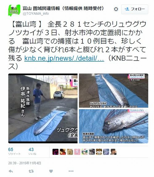 【深海】富山で「リュウグウノツカイ」を捕獲…富山湾で確認されたのは10例目