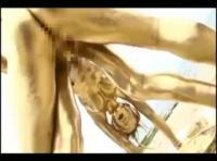 【無料エロ動画】なんじゃこりゃ金箔SEX【フェチ】