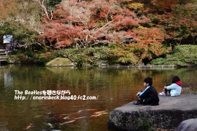 IMG_2015_11_29_2451.jpg