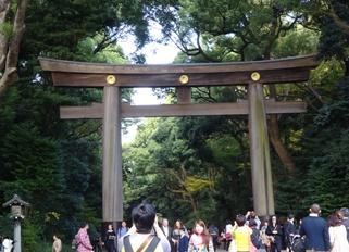 15東京8 明治神宮1