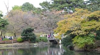 15東京14