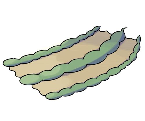 ワダチヘビ