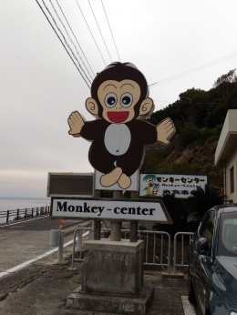 MonkeyCenter_015_org.jpg