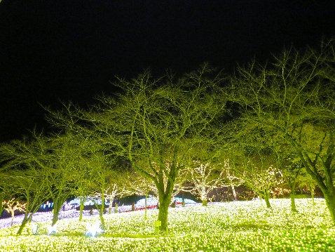 1118-3f.jpg