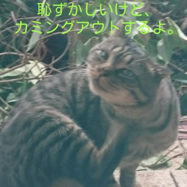 201511280121475e1.jpg