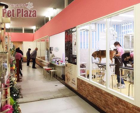 PetPlaza高槻城西店3