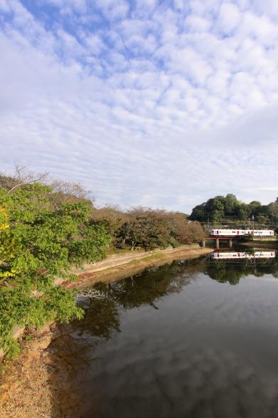 2008年10月 和歌山電鐵貴志川線 大池遊園