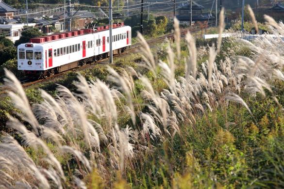 2008年11月下旬 和歌山電鐵貴志川線 山東~大池遊園