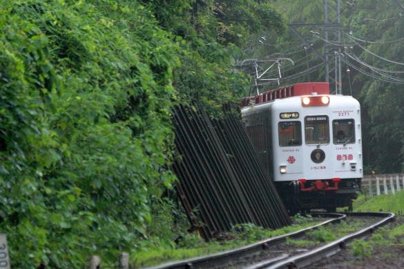2008年 和歌山電鐵貴志川線 山東~大池遊園
