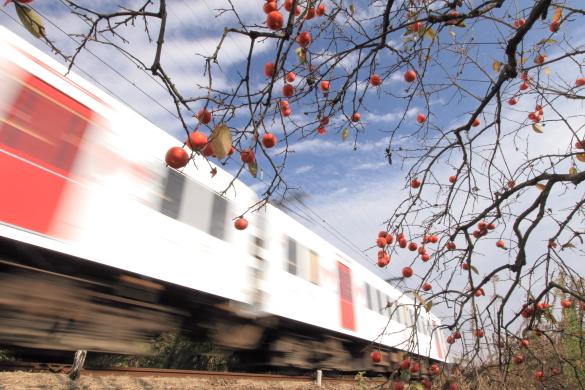 2009年11月下旬 和歌山電鐵貴志川線 伊太祈曽~山東