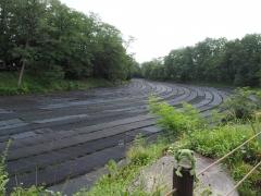 Meerrettichfarm Daio