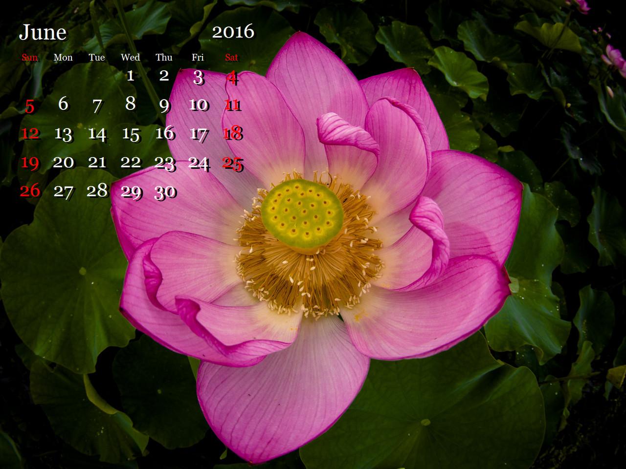 1-1-LR5__EE00759-8.jpg
