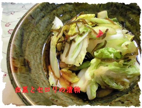 白菜とセロリ。おいしい~