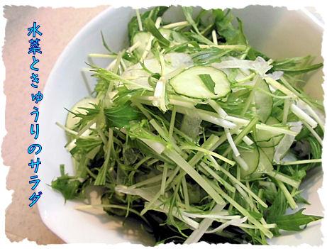 水菜のサラダ