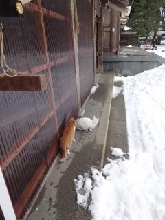 2014年12月21日 伊佐須美神社5