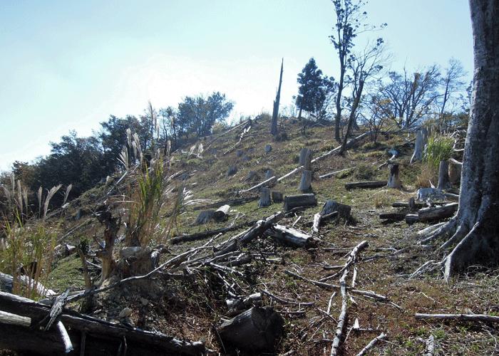 2015,10,25英彦山-19