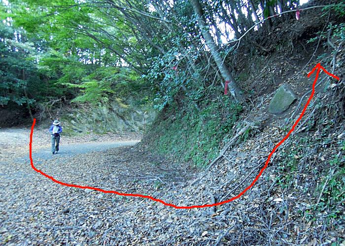 2015,10,25英彦山-10