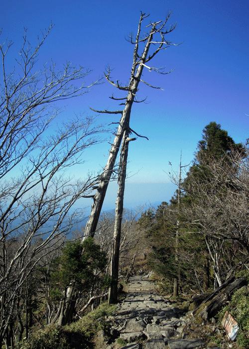 2015,11,3峰入り古道-39