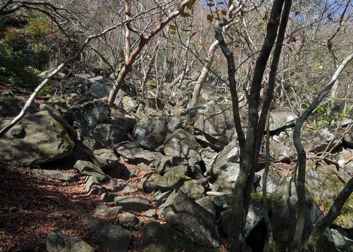 2015,11,3峰入り古道-35