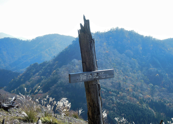 2015,11,3峰入り古道-29