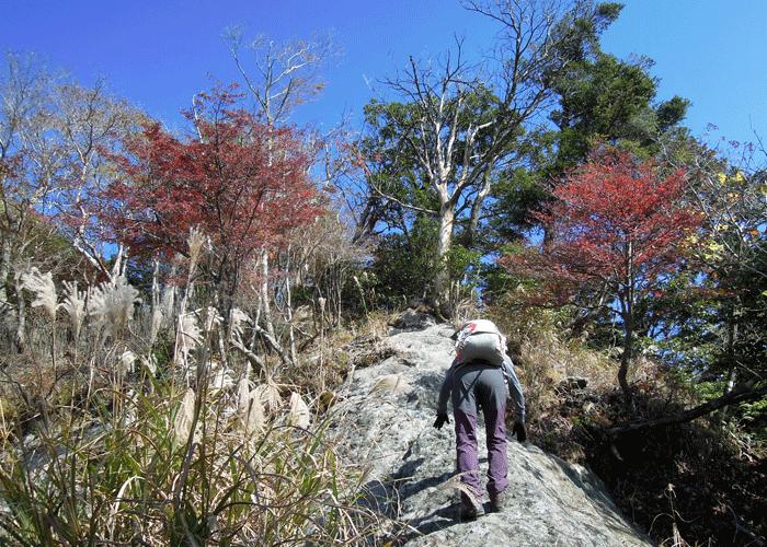 2015,11,3峰入り古道-26