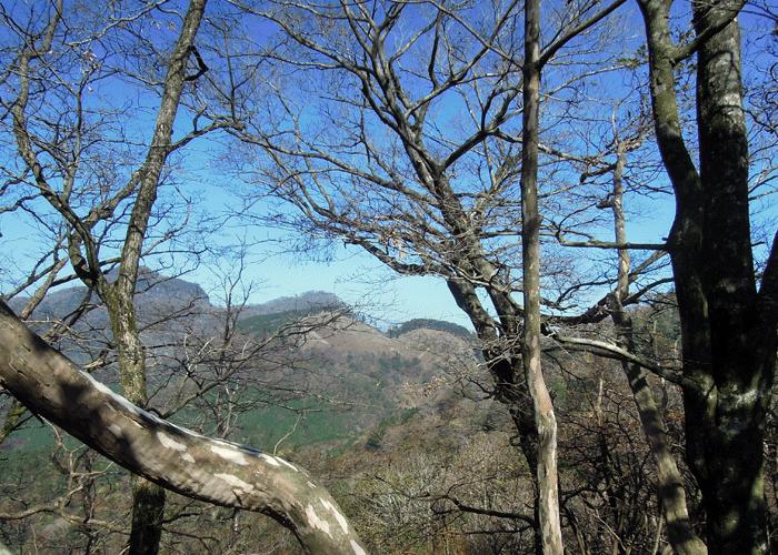 2015,11,3峰入り古道-24