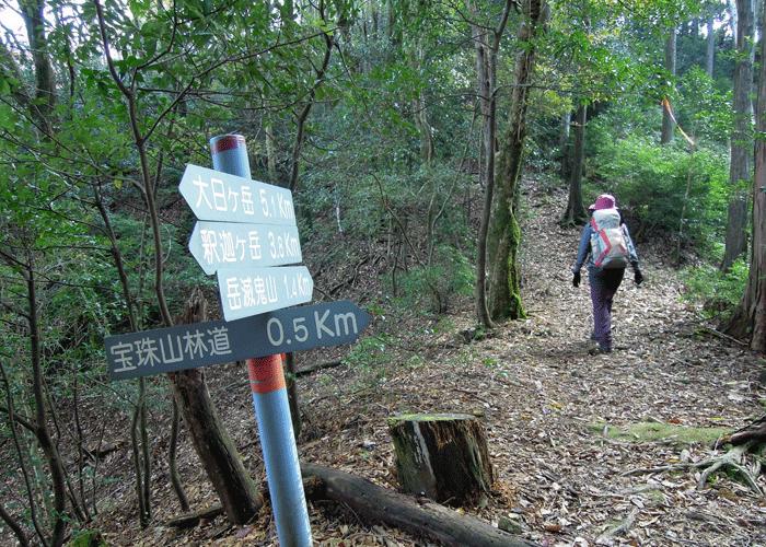 2015,11,3峰入り古道-17