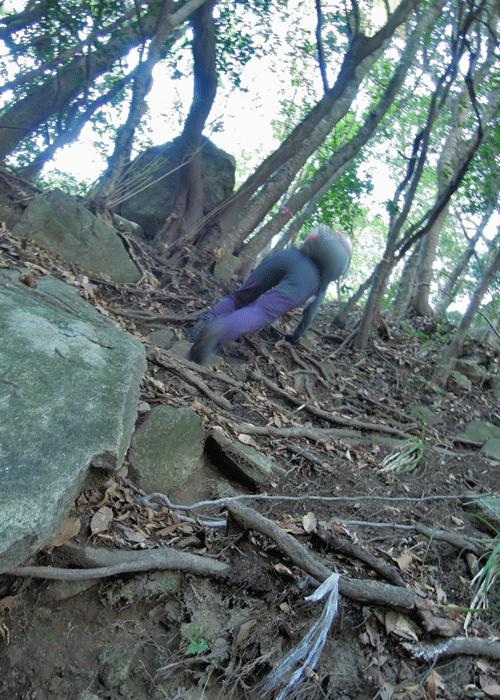 2015,11,3峰入り古道-12