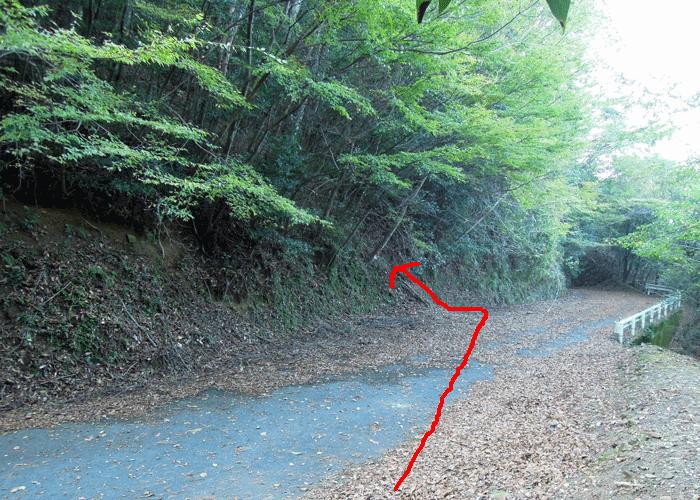 2015,11,3峰入り古道-8