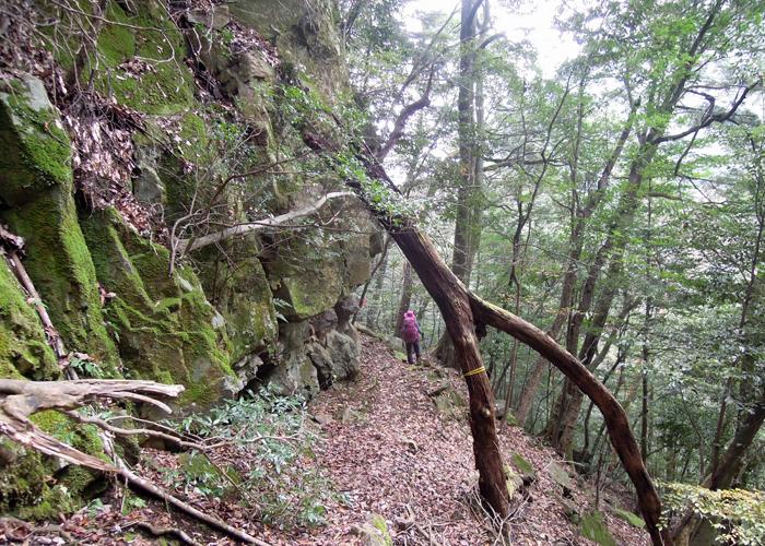 2015,11,21傾山-27