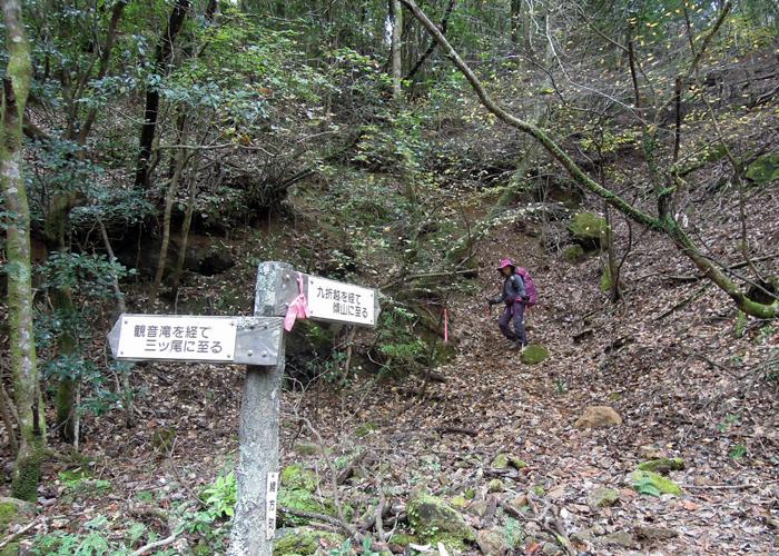2015,11,21傾山-28