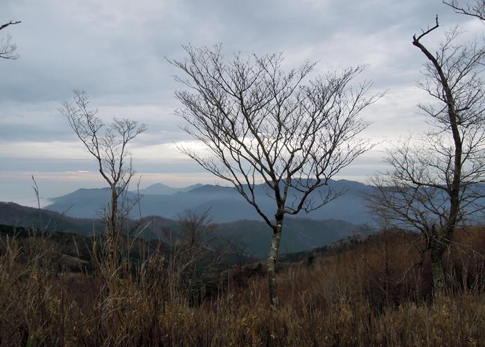 2015,11,21傾山-20