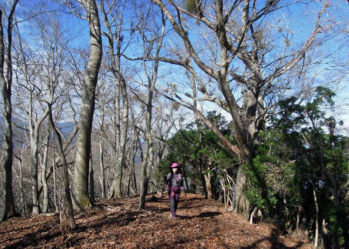 2015,11,21傾山-4