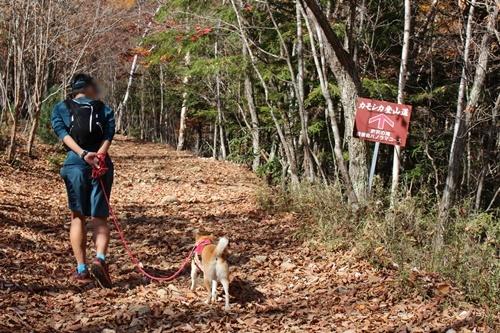 カモシカ登山道1