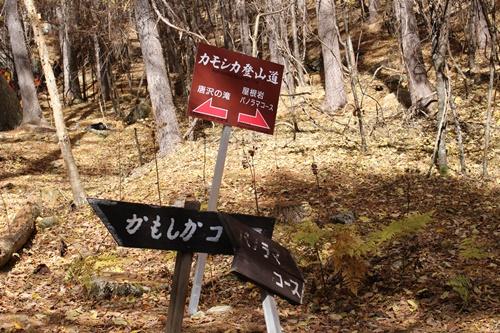 カモシカ登山道5